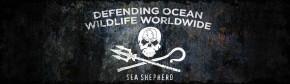 OZEAN FESTIVAL – Sea Shepherd Benefiz Konzert