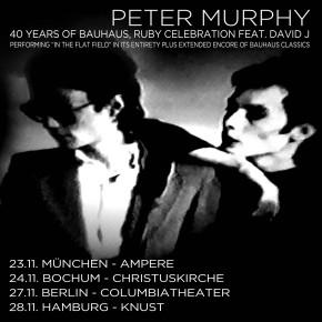 PETER MURPHY fällt wegen Krankheit leider aus !